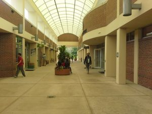 Университет центральной Флориды