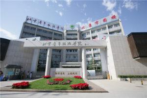Пекинский Институт Молодежной Политики