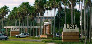 Летняя программа в Университете Южной Флориды