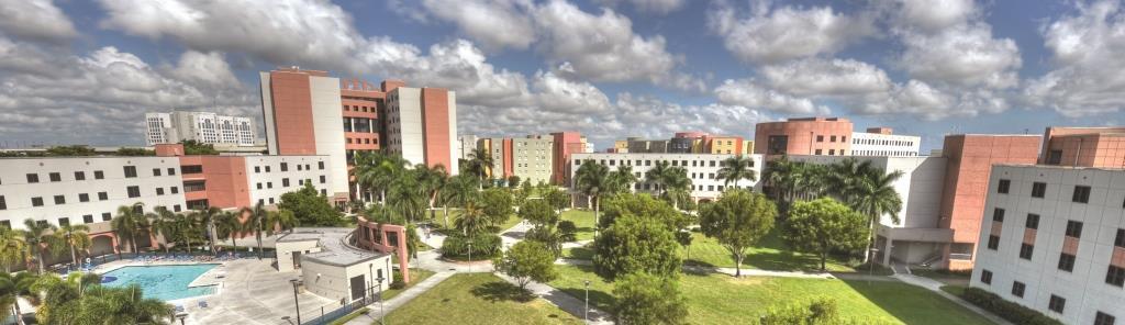 Florida International University (Международный Университет Флориды)