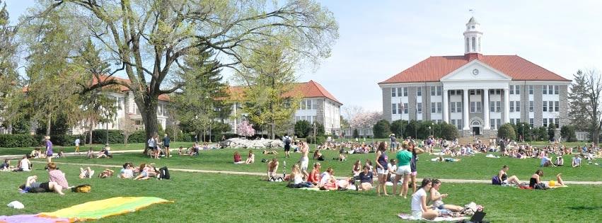 Хочешь стать миллионером - поступай в университет США!