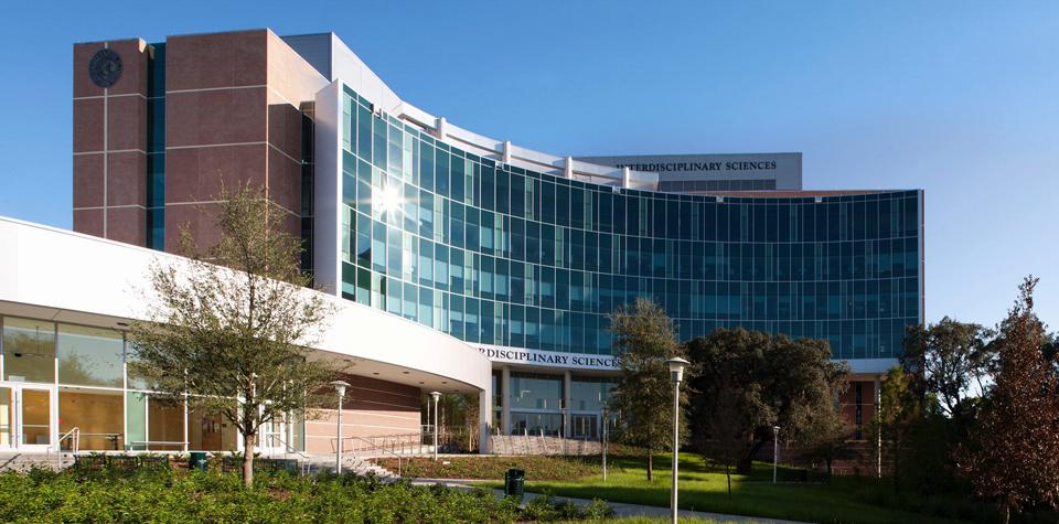 University of South Florida (Университет Южной Флориды)